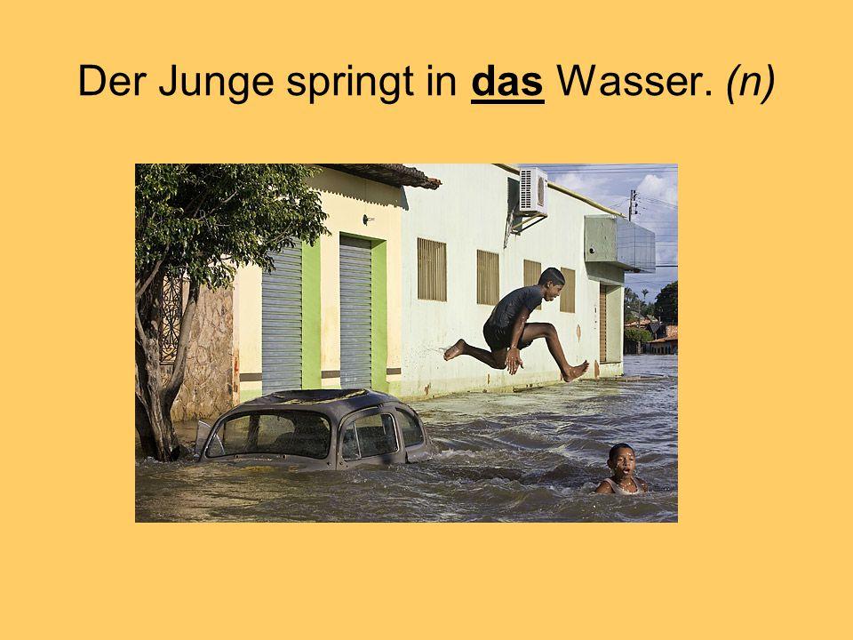 Der Junge springt in das Wasser. (n)