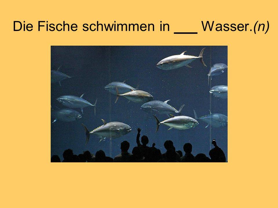 Die Fische schwimmen in ___ Wasser.(n)