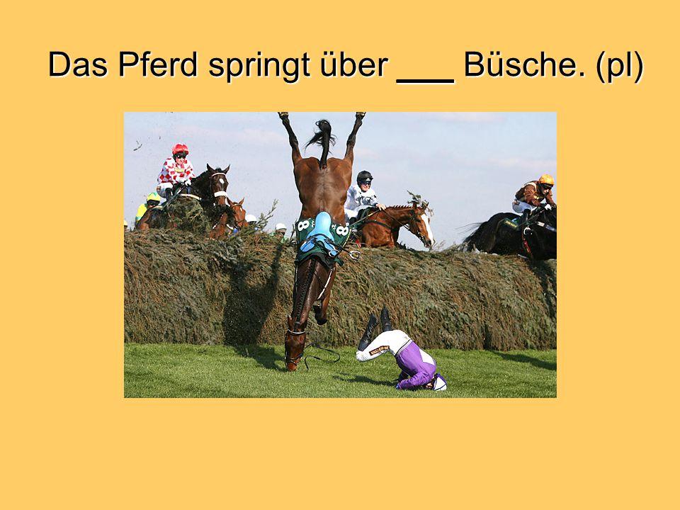 Das Pferd springt über ___ Büsche. (pl)