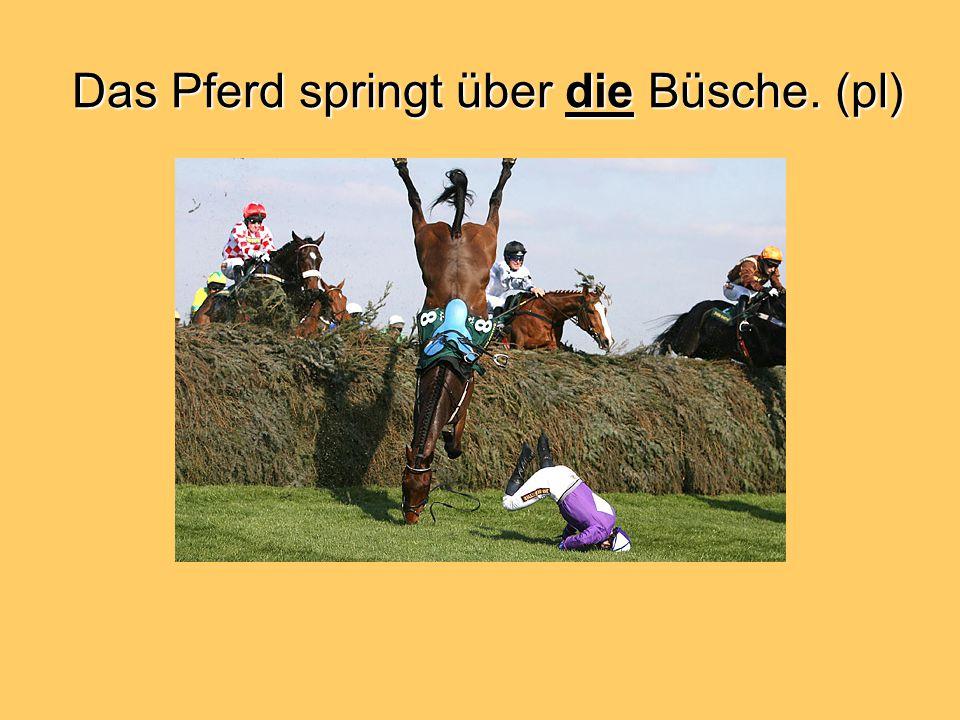 Das Pferd springt über die Büsche. (pl)