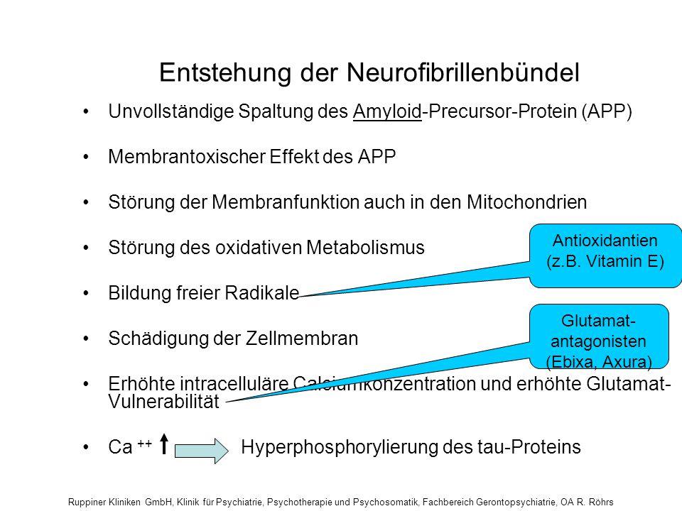 Entstehung der Neurofibrillenbündel Unvollständige Spaltung des Amyloid-Precursor-Protein (APP) Membrantoxischer Effekt des APP Störung der Membranfun