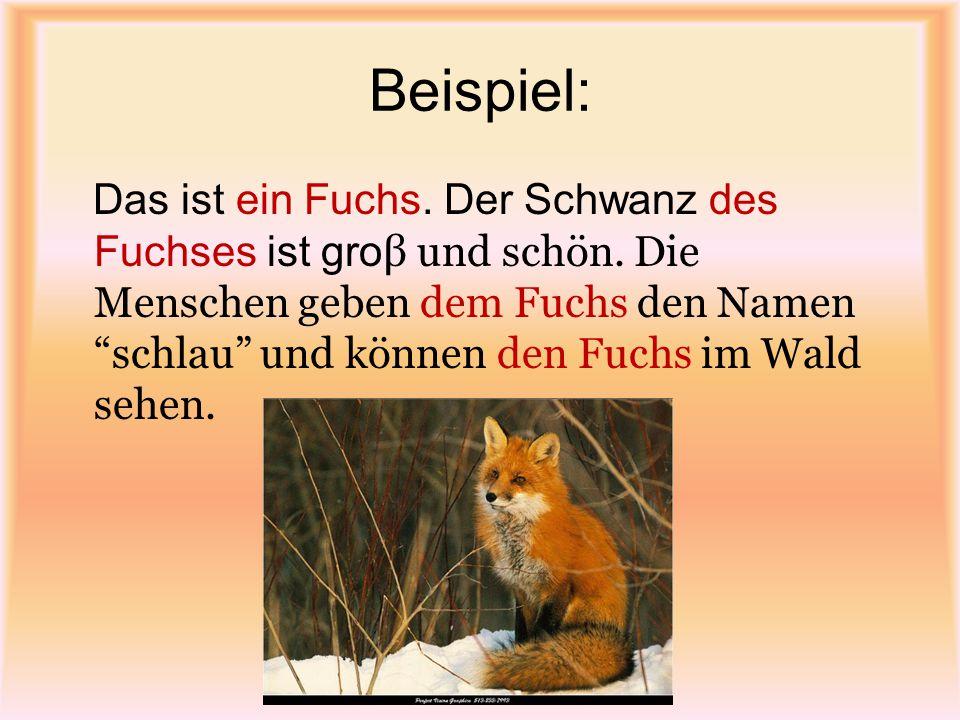 """Beispiel: Das ist ein Fuchs. Der Schwanz des Fuchses ist gro β und schön. Die Menschen geben dem Fuchs den Namen """"schlau"""" und können den Fuchs im Wald"""