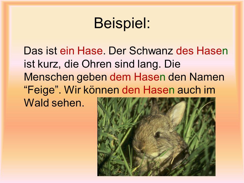 """Beispiel: Das ist ein Hase. Der Schwanz des Hasen ist kurz, die Ohren sind lang. Die Menschen geben dem Hasen den Namen """"Feige"""". Wir können den Hasen"""