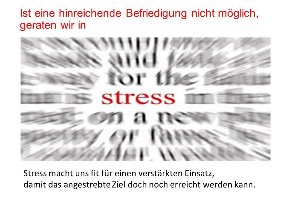 Ist eine hinreichende Befriedigung nicht möglich, geraten wir in Stress macht uns fit für einen verstärkten Einsatz, damit das angestrebte Ziel doch noch erreicht werden kann.