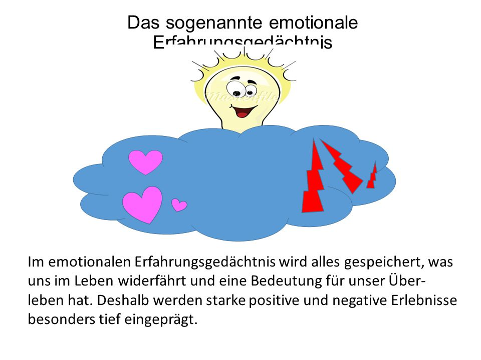 Das sogenannte emotionale Erfahrungsgedächtnis Im emotionalen Erfahrungsgedächtnis wird alles gespeichert, was uns im Leben widerfährt und eine Bedeutung für unser Über- leben hat.