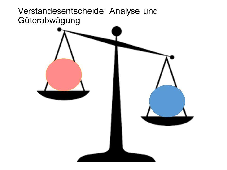 Verstandesentscheide: Analyse und Güterabwägung