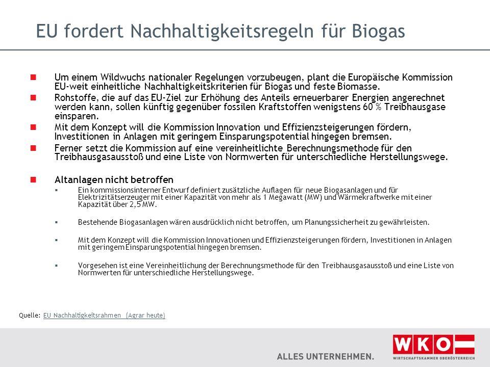 EU fordert Nachhaltigkeitsregeln für Biogas Um einem Wildwuchs nationaler Regelungen vorzubeugen, plant die Europäische Kommission EU-weit einheitlich