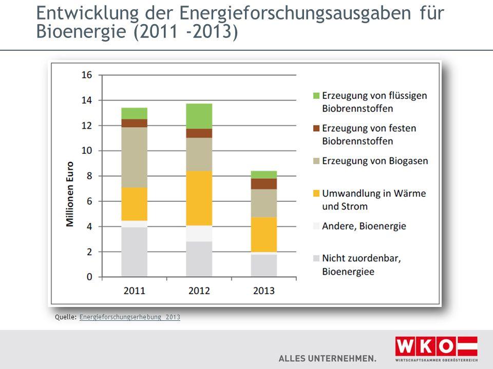 Entwicklung der Energieforschungsausgaben für Bioenergie (2011 ‐2013) Quelle: Energieforschungserhebung 2013Energieforschungserhebung 2013