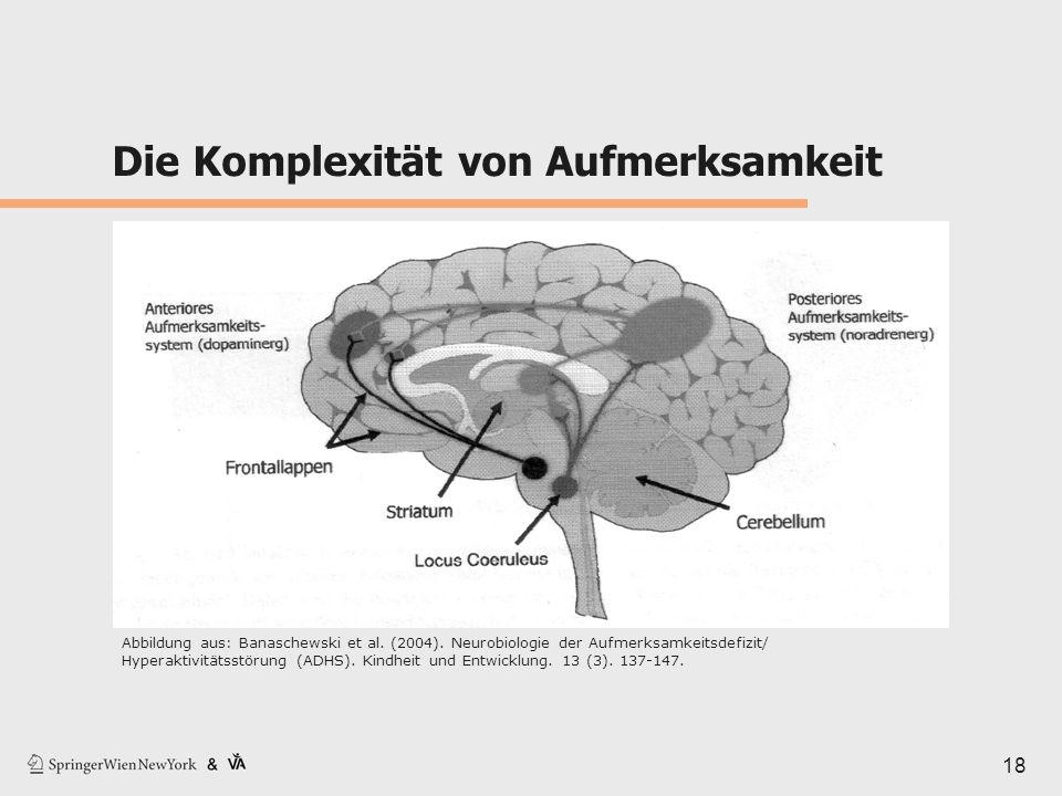 Die Komplexität von Aufmerksamkeit 18 Abbildung aus: Banaschewski et al. (2004). Neurobiologie der Aufmerksamkeitsdefizit/ Hyperaktivitätsstörung (ADH