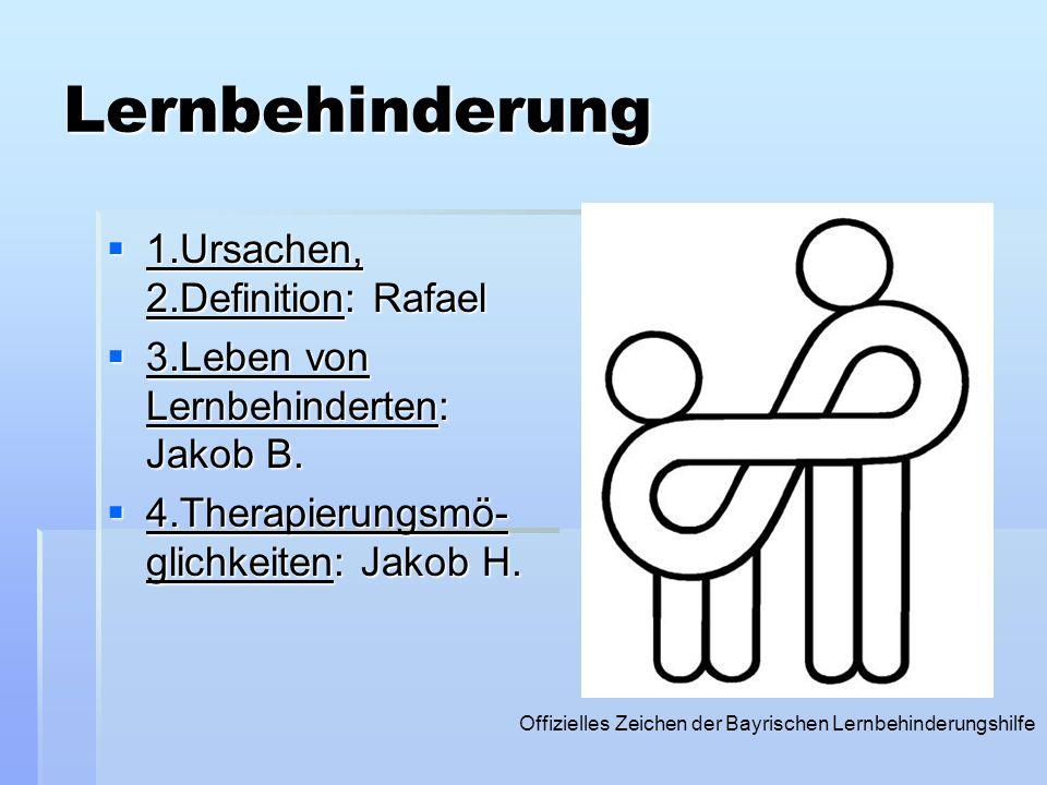 Lernbehinderung 1111.Ursachen, 2.Definition: Rafael 3333.Leben von Lernbehinderten: Jakob B. 4444.Therapierungsmö- glichkeiten: Jakob H. O