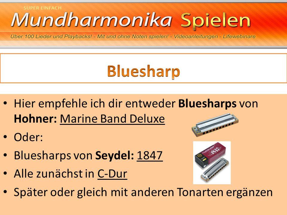 Hier empfehle ich dir entweder Bluesharps von Hohner: Marine Band Deluxe Oder: Bluesharps von Seydel: 1847 Alle zunächst in C-Dur Später oder gleich m