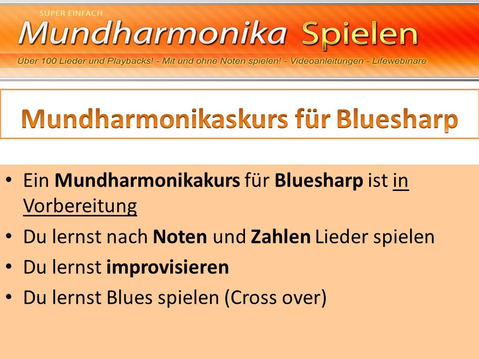 Ein Mundharmonikakurs für Bluesharp ist in Vorbereitung Du lernst nach Noten und Zahlen Lieder spielen Du lernst improvisieren Du lernst Blues spielen