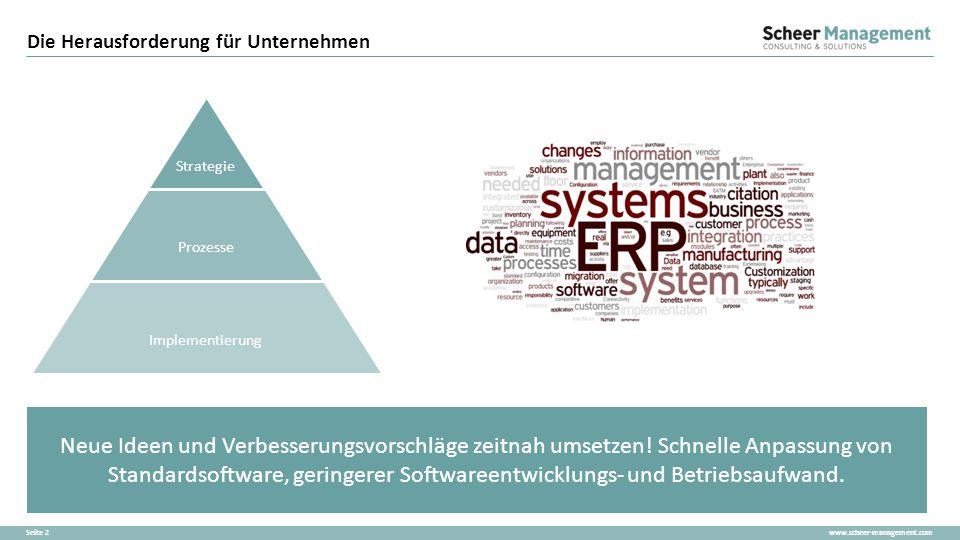 www.scheer-management.comSeite 2 Neue Ideen und Verbesserungsvorschläge zeitnah umsetzen! Schnelle Anpassung von Standardsoftware, geringerer Software