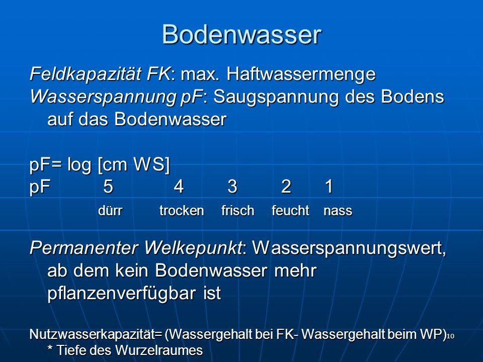 10 Bodenwasser Feldkapazität FK: max. Haftwassermenge Wasserspannung pF: Saugspannung des Bodens auf das Bodenwasser pF= log [cm WS] pF 54 3 2 1 dürr