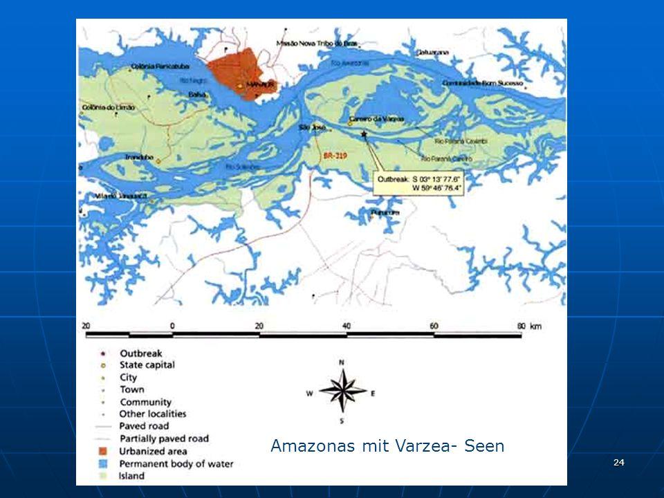 24 Amazonas mit Varzea- Seen