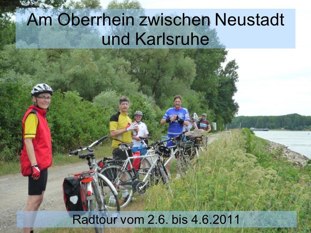 Am Oberrhein zwischen Neustadt und Karlsruhe Radtour vom 2.6. bis 4.6.2011