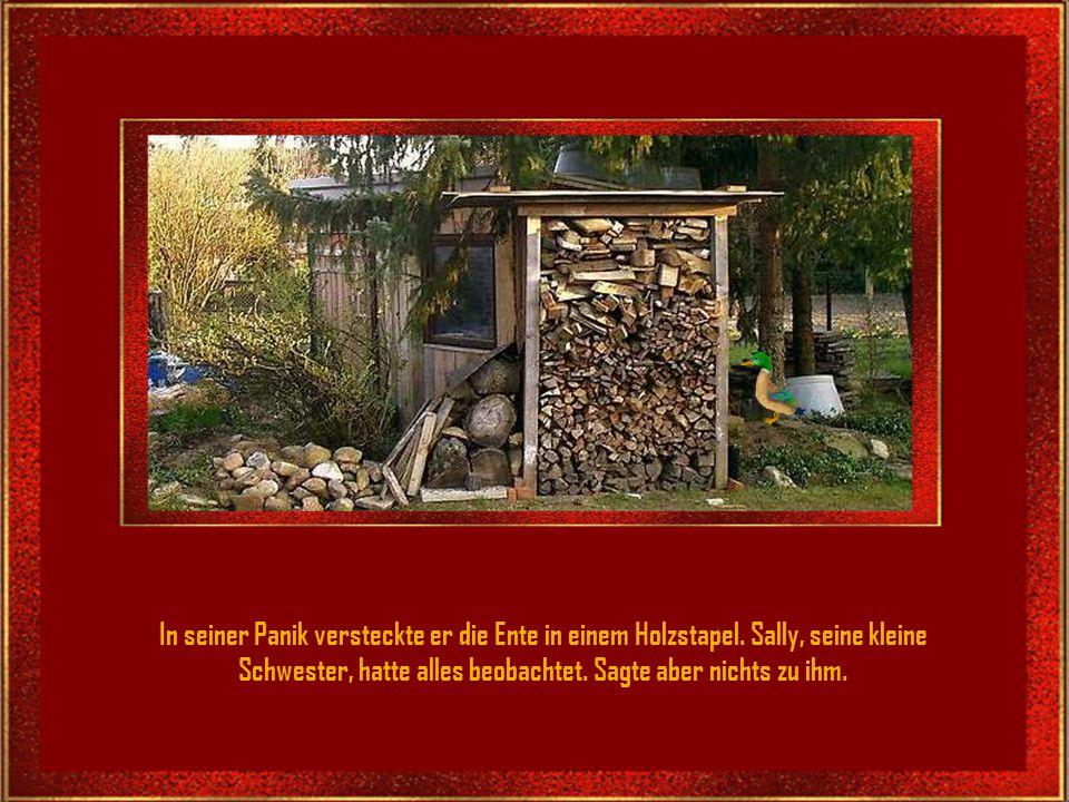In seiner Panik versteckte er die Ente in einem Holzstapel.
