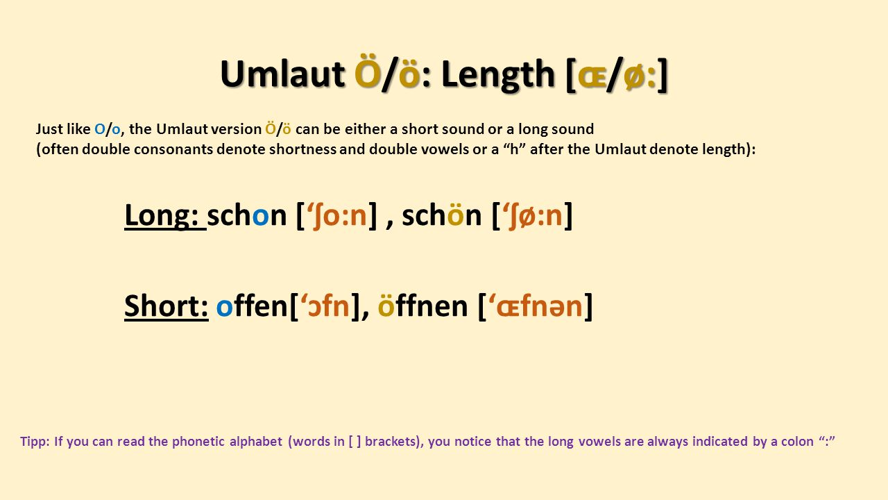 Umlaut Ö and O –contrast: Whilst the mouth position of both o and ö is pretty similar, the position of jaw and Adam's Apple changes: For the o , the lips are pursed, the teeth are apart, the bottom jaw is dropped, the tongue loose in the bottom of the mouth.