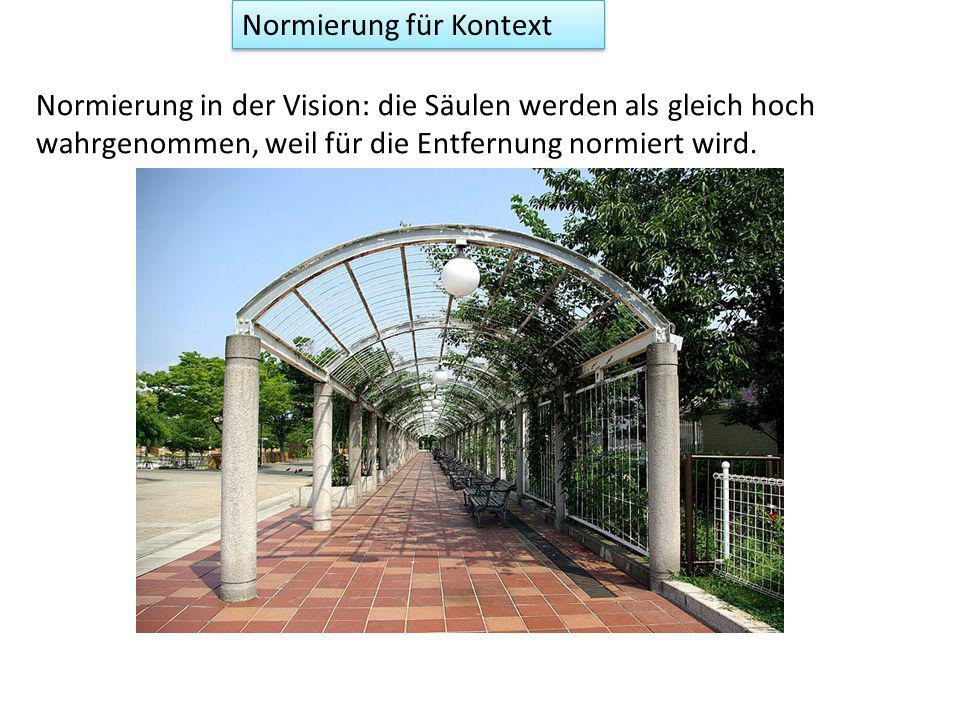 Normierung für Kontext Normierung in der Vision: die Säulen werden als gleich hoch wahrgenommen, weil für die Entfernung normiert wird.