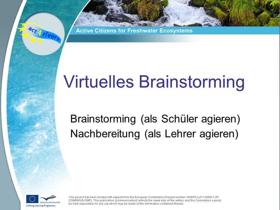 Virtuelles Brainstorming Brainstorming (als Schüler agieren) Nachbereitung (als Lehrer agieren)