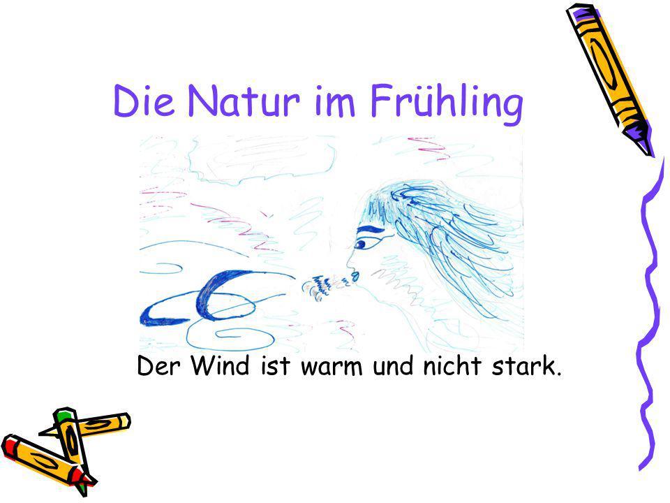 Die Natur im Frühling Der Wind ist warm und nicht stark.