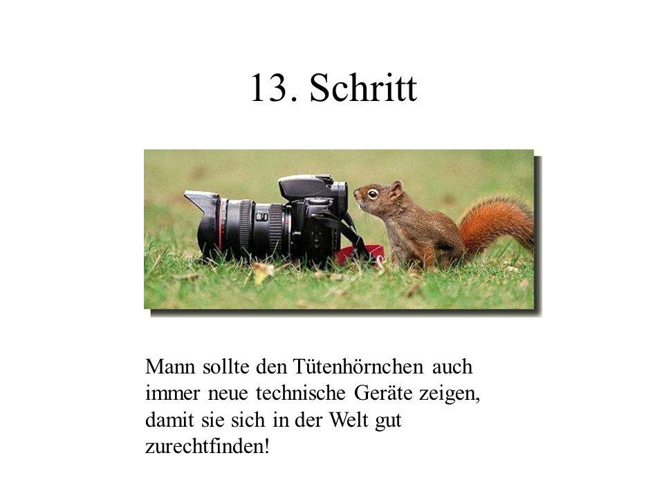 13. Schritt Mann sollte den Tütenhörnchen auch immer neue technische Geräte zeigen, damit sie sich in der Welt gut zurechtfinden!