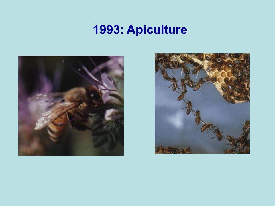 1993: Apiculture