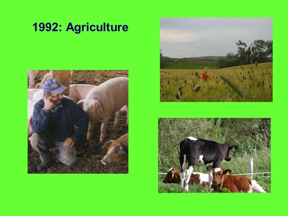 1992: Agriculture