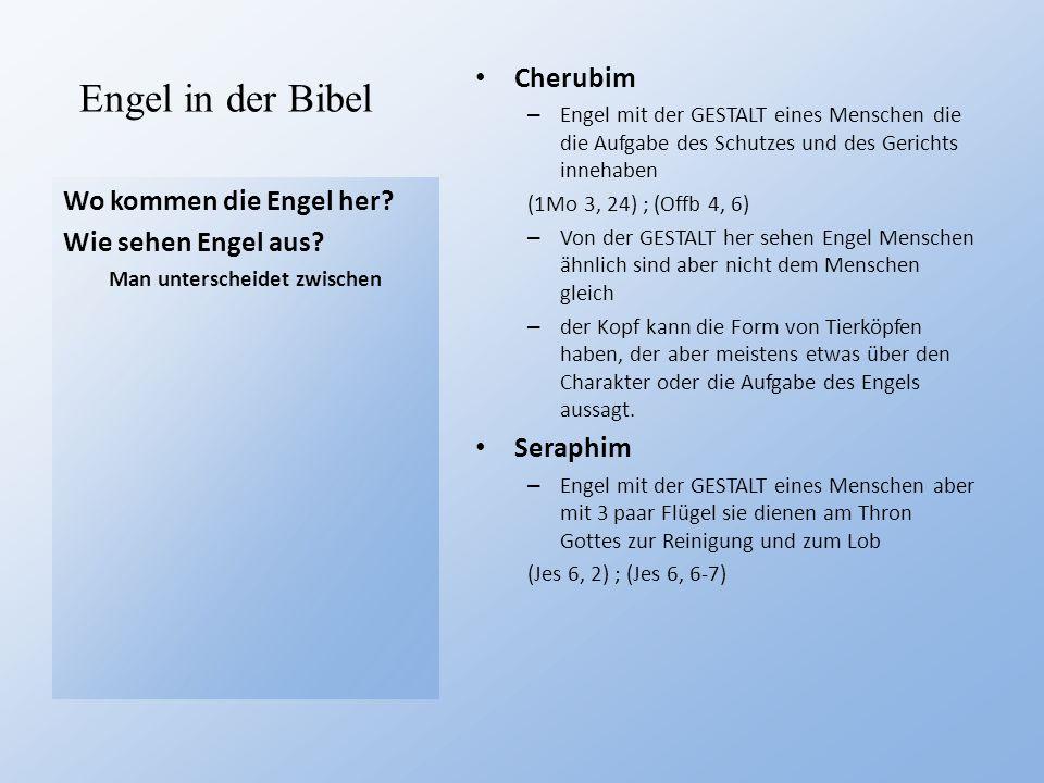 Engel in der Bibel Wo kommen die Engel her? Wie sehen Engel aus? Man unterscheidet zwischen Cherubim – Engel mit der GESTALT eines Menschen die die Au