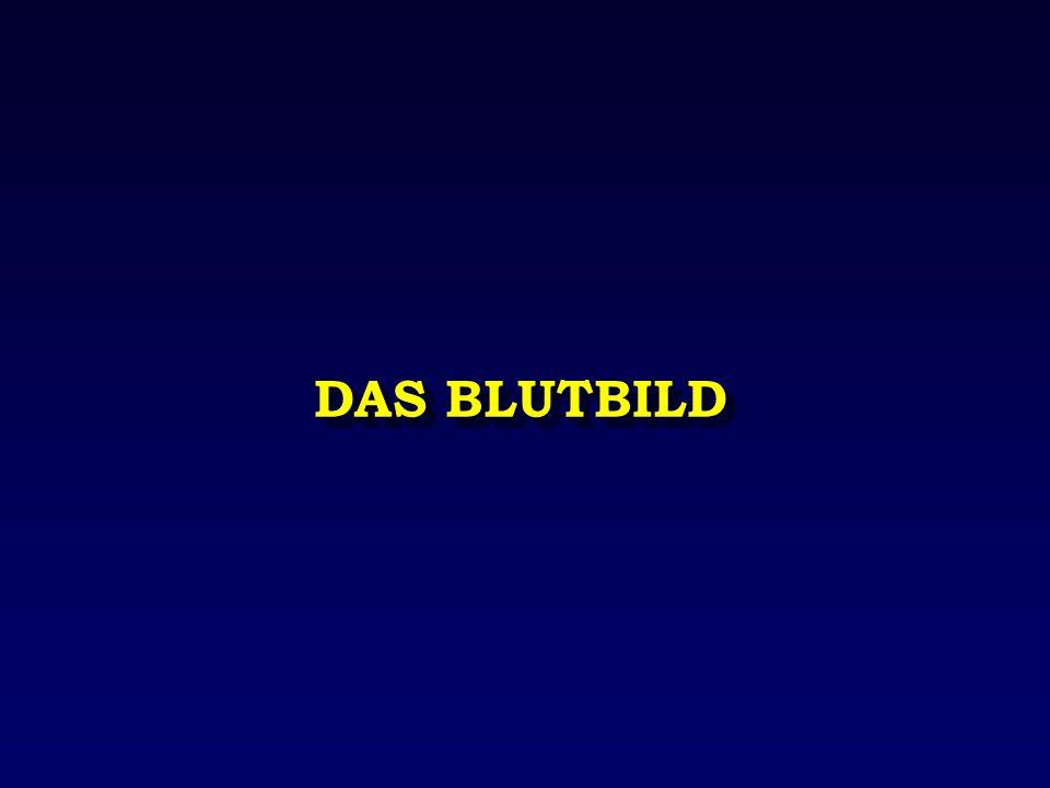 DAS BLUTBILD