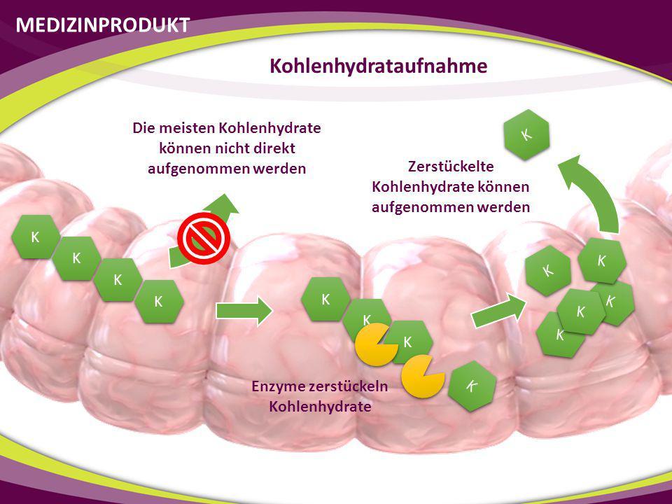 MEDIZINPRODUKT Kohlenhydrataufnahme K K K K K K K K Die meisten Kohlenhydrate können nicht direkt aufgenommen werden Enzyme zerstückeln Kohlenhydrate