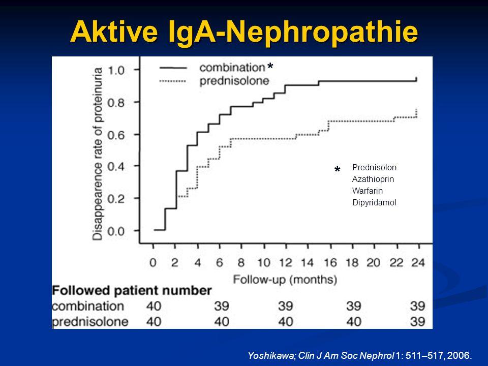 Aktive IgA-Nephropathie Yoshikawa; Clin J Am Soc Nephrol 1: 511–517, 2006. Prednisolon Azathioprin Warfarin Dipyridamol * *