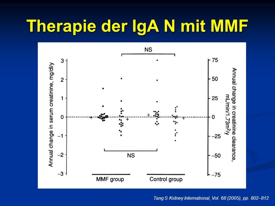 Therapie der IgA N mit MMF Tang S Kidney International, Vol. 68 (2005), pp. 802–812