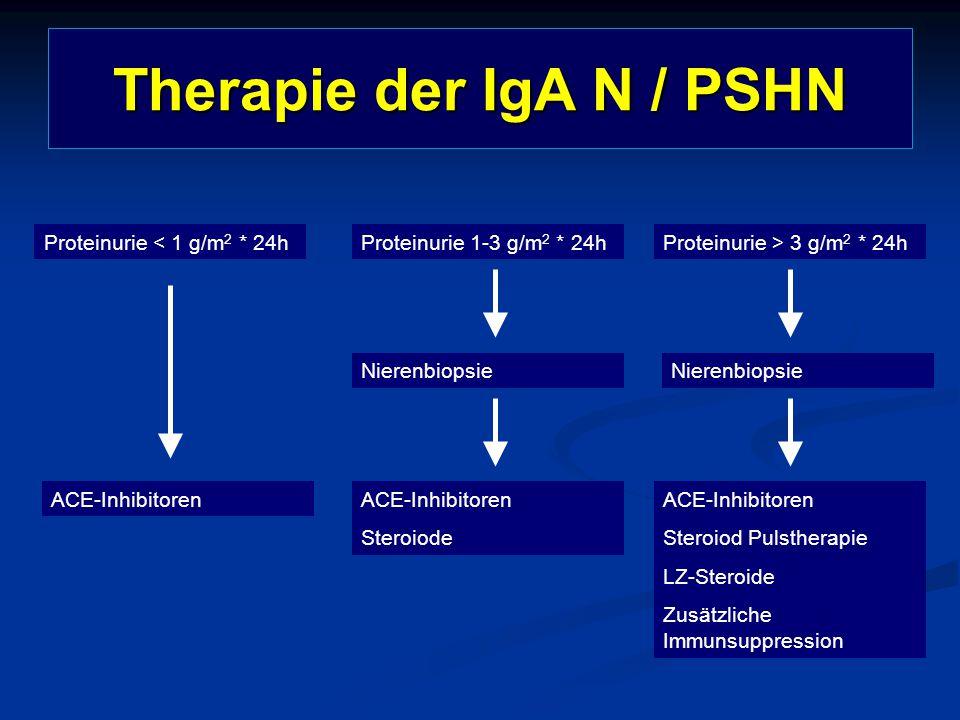 Therapie der IgA N / PSHN Proteinurie < 1 g/m 2 * 24hProteinurie 1-3 g/m 2 * 24hProteinurie > 3 g/m 2 * 24h ACE-Inhibitoren Steroiode ACE-Inhibitoren