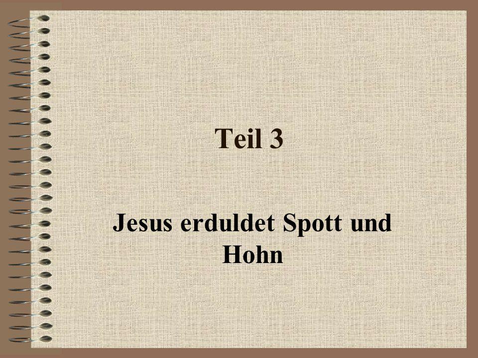 Teil 3 Jesus erduldet Spott und Hohn