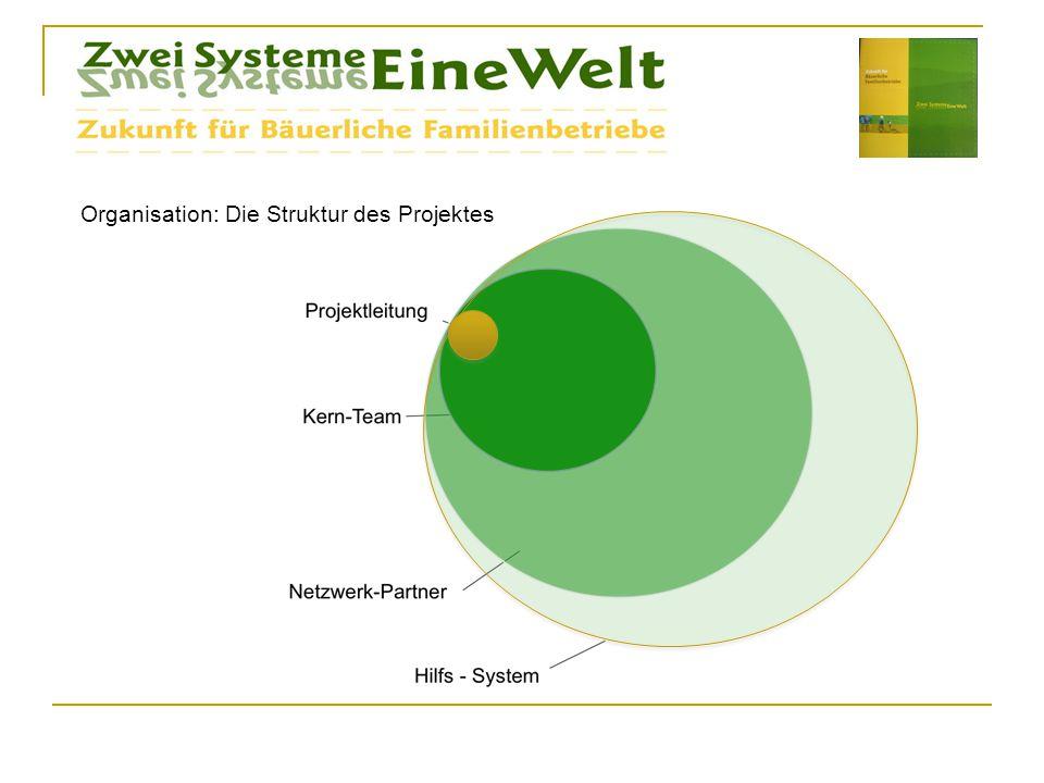 Organisation: Die Struktur des Projektes