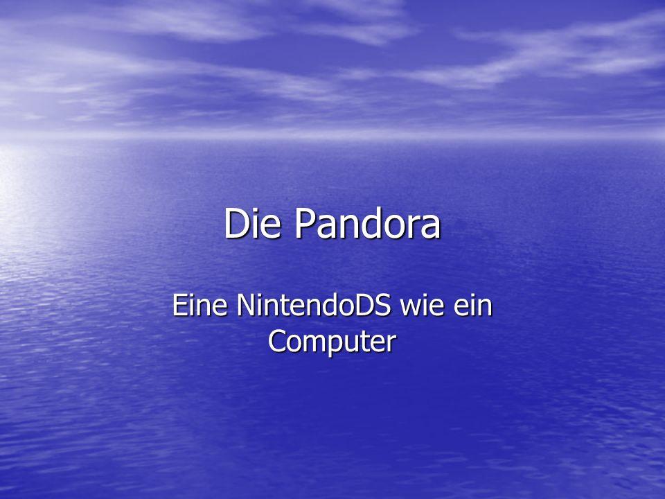 Die Pandora Eine NintendoDS wie ein Computer