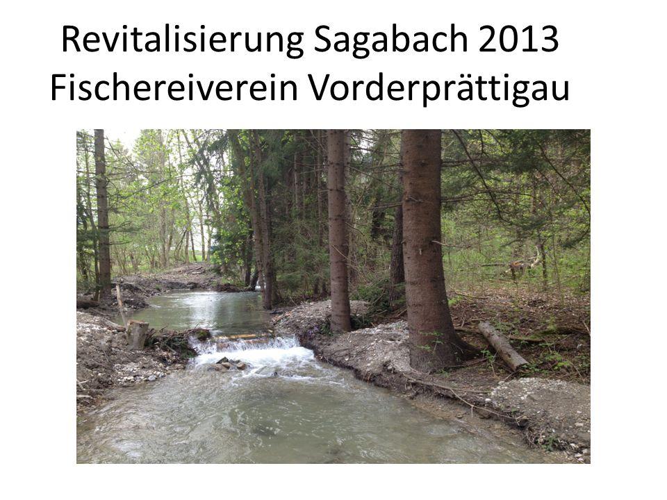 Revitalisierung Sagabach 2013 Fischereiverein Vorderprättigau