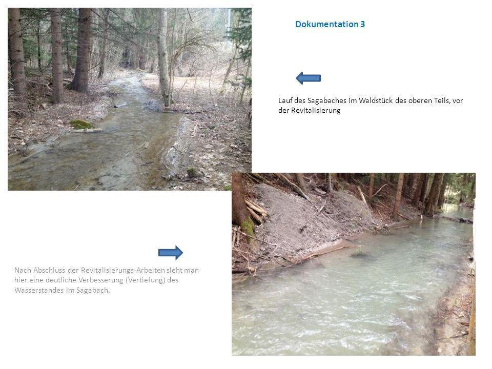 Lauf des Sagabaches im Waldstück des oberen Teils, vor der Revitalisierung Nach Abschluss der Revitalisierungs-Arbeiten sieht man hier eine deutliche Verbesserung (Vertiefung) des Wasserstandes im Sagabach.