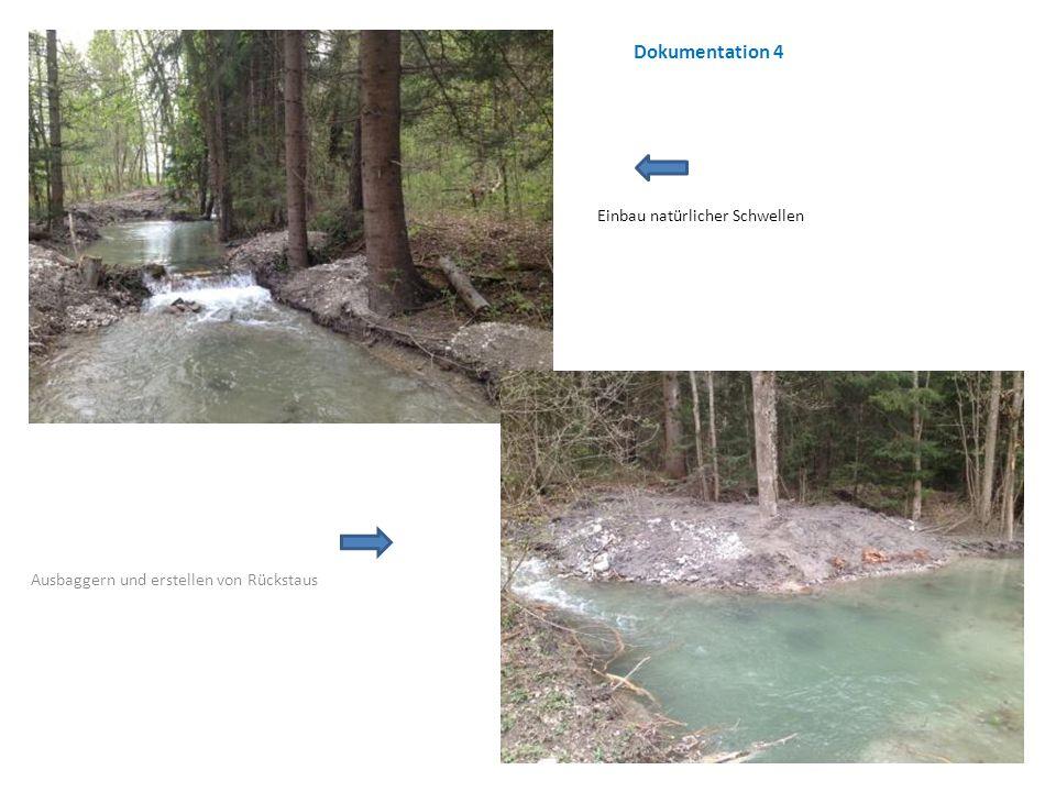 Einbau natürlicher Schwellen Ausbaggern und erstellen von Rückstaus Dokumentation 4
