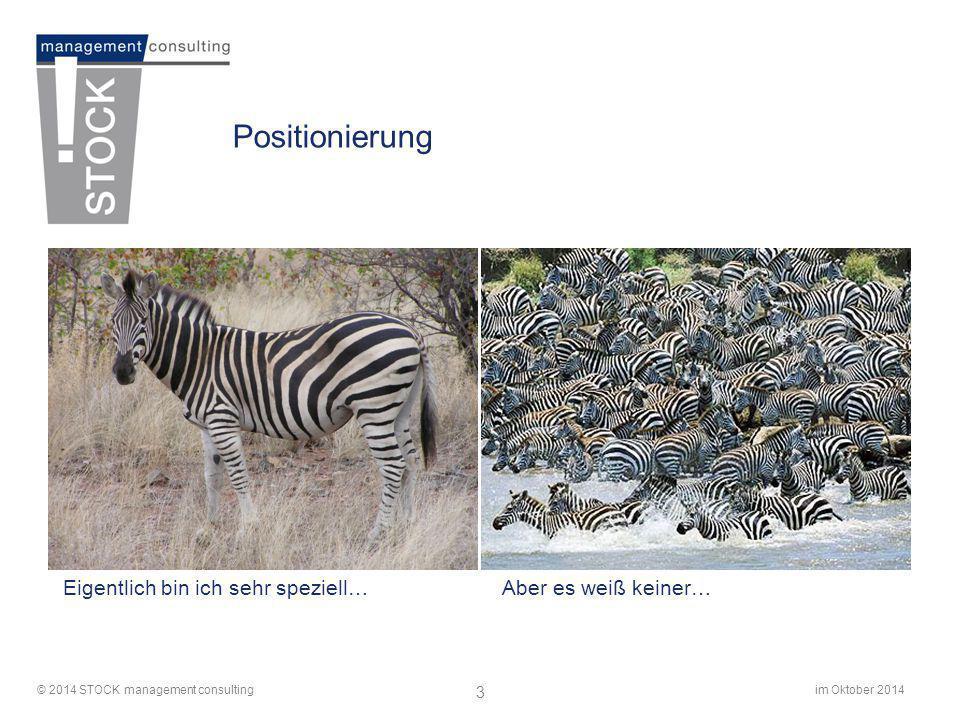 im Oktober 2014© 2014 STOCK management consulting 4 Positionierung: Unternehmenswerte