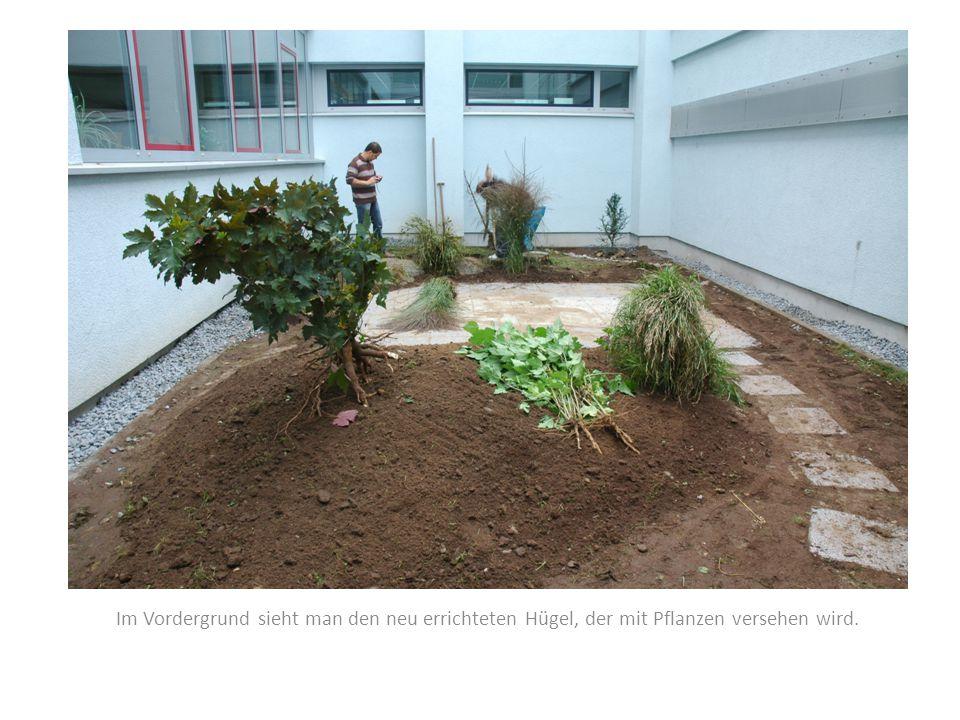 Im Vordergrund sieht man den neu errichteten Hügel, der mit Pflanzen versehen wird.