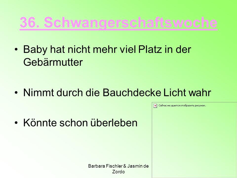 Barbara Fischler & Jasmin de Zordo 36. Schwangerschaftswoche Baby hat nicht mehr viel Platz in der Gebärmutter Nimmt durch die Bauchdecke Licht wahr K