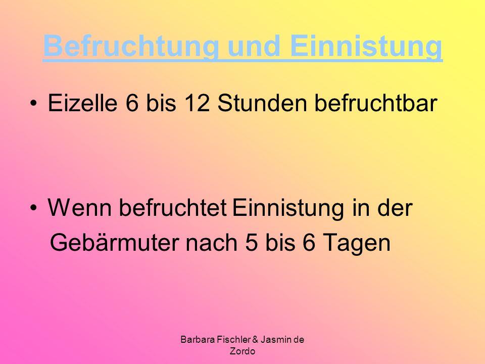 Barbara Fischler & Jasmin de Zordo Befruchtung und Einnistung Eizelle 6 bis 12 Stunden befruchtbar Wenn befruchtet Einnistung in der Gebärmuter nach 5 bis 6 Tagen