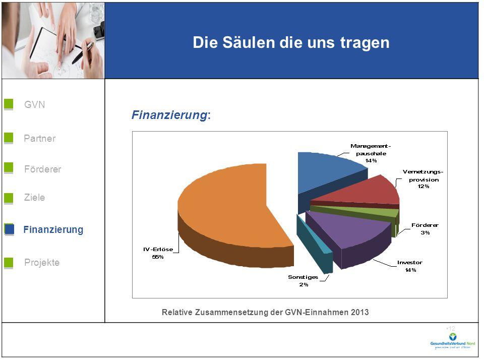 Grafik H 3,99 * B 5,38 Förderer Ziele Finanzierung GVN Projekte Partner 12 Die Säulen die uns tragen Finanzierung Finanzierung: Relative Zusammensetzung der GVN-Einnahmen 2013