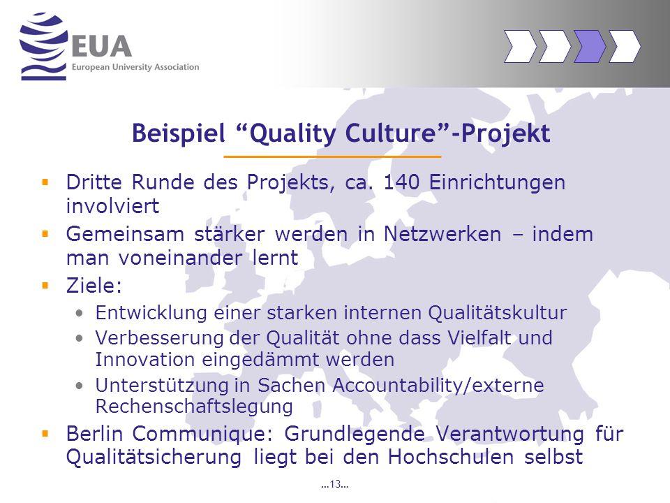 …13… Beispiel Quality Culture -Projekt  Dritte Runde des Projekts, ca.