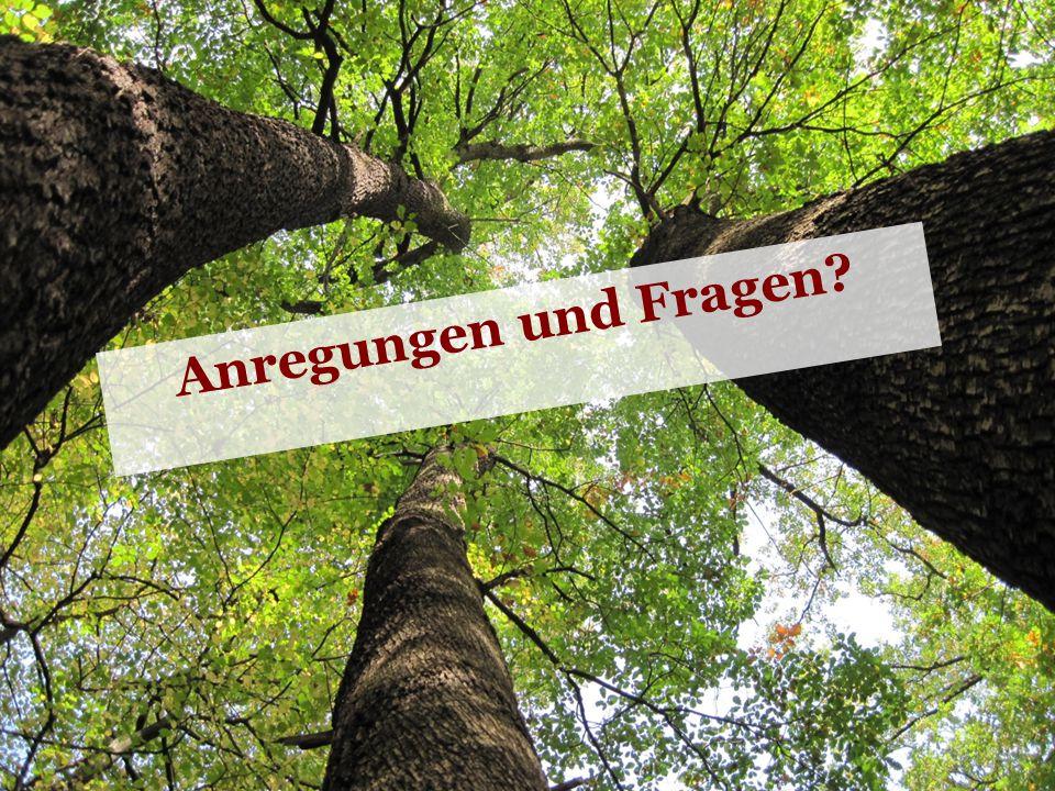 Waldbauernverband Nordrhein-Westfalen e.V. © Waldbauernverband 2011 8 Anregungen und Fragen?