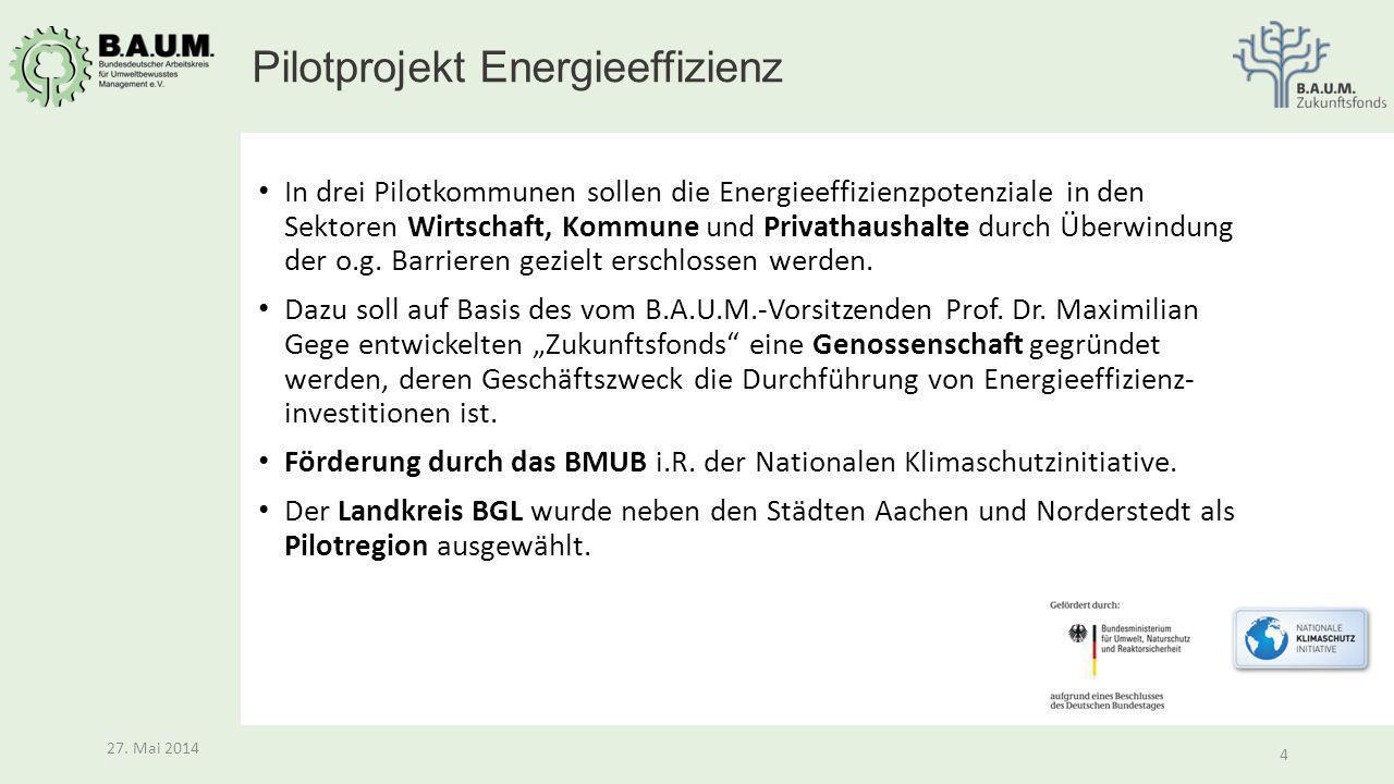 4 27. Mai 2014 4 In drei Pilotkommunen sollen die Energieeffizienzpotenziale in den Sektoren Wirtschaft, Kommune und Privathaushalte durch Überwindung