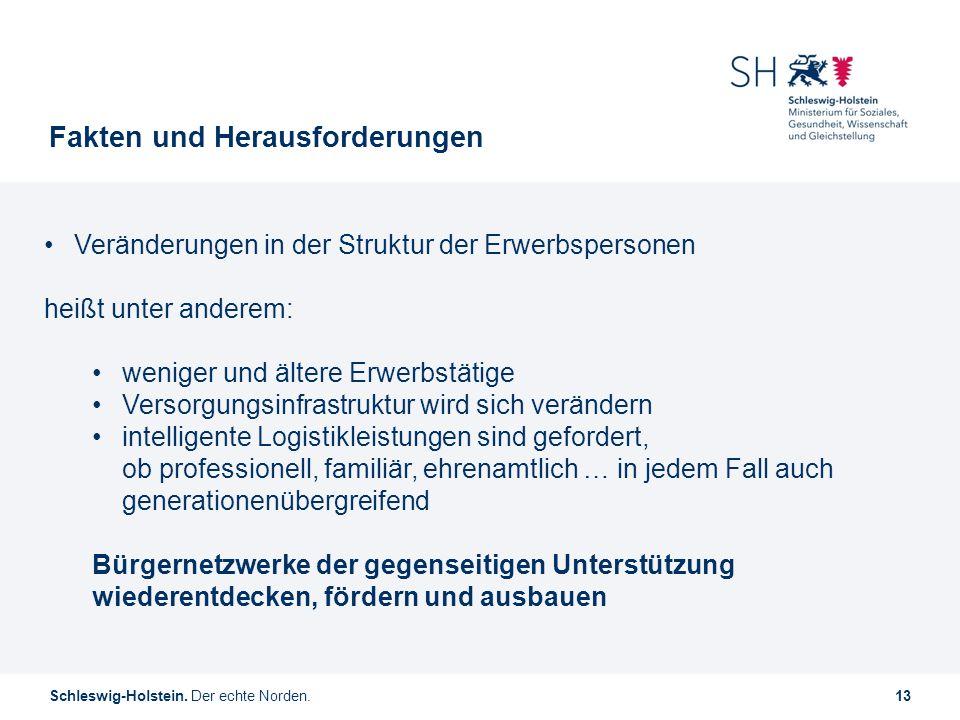 Schleswig-Holstein. Der echte Norden.13 Fakten und Herausforderungen Veränderungen in der Struktur der Erwerbspersonen heißt unter anderem: weniger un