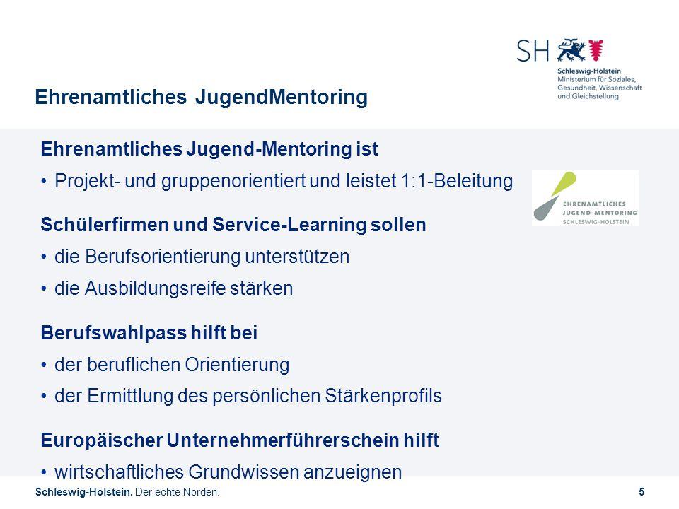 Schleswig-Holstein. Der echte Norden.5 Ehrenamtliches JugendMentoring Ehrenamtliches Jugend-Mentoring ist Projekt- und gruppenorientiert und leistet 1